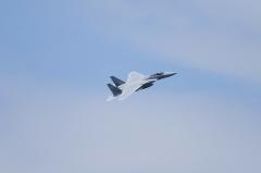 Hyakuri AB_F-15J_301