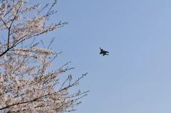 Hyakuri AB_F-15J_305