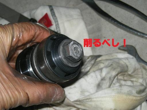 DSCN8423.jpg