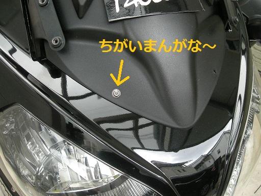 DSCN9177.jpg