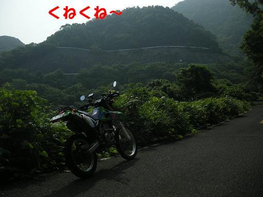 DSCN9186.jpg