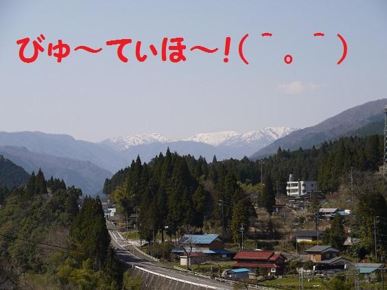 P1070150.jpg