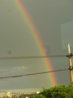 rainbou