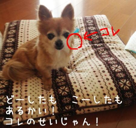 Aブログ080104