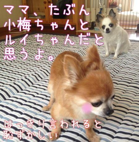 Aブログ080106