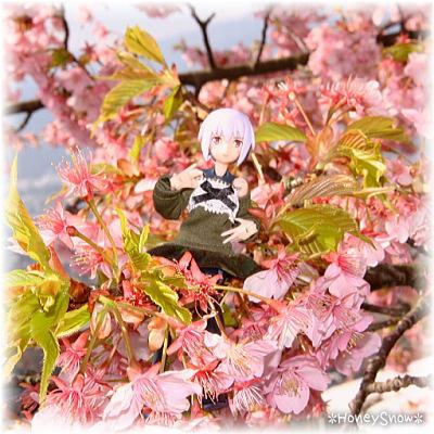 【おでかけ】 桜2014/武装神姫