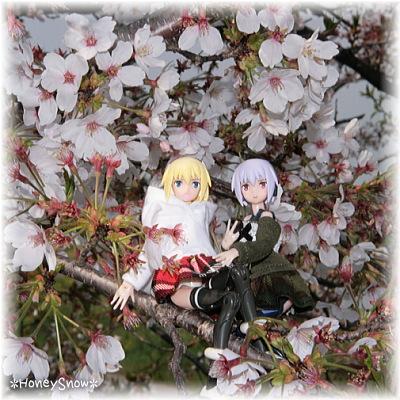 【おでかけ神姫】 桜2014