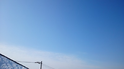 20140217pic.jpg