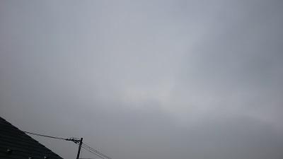 20140227pic.jpg