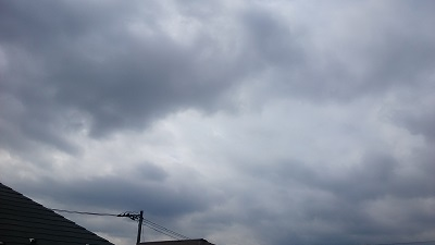 20140303pic.jpg