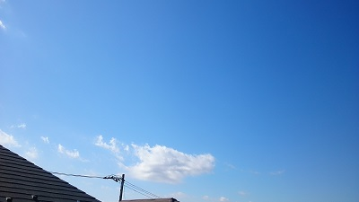 20140307pic.jpg