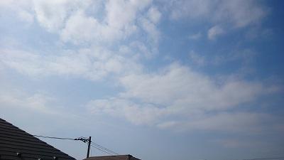 20140309pic.jpg