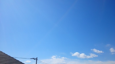 20140310pic.jpg