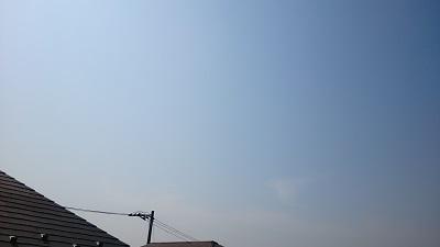 20140312pic.jpg