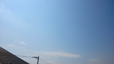 20140318pic.jpg