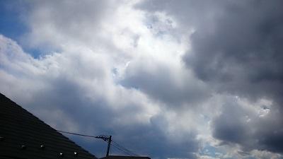 20140321pic.jpg