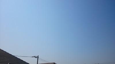 20140328pic.jpg