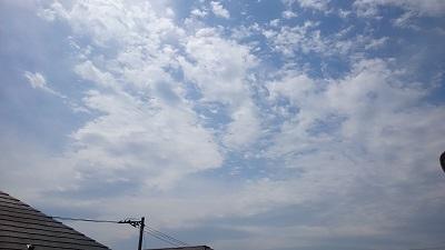 20140329pic.jpg