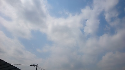 20140409pic.jpg