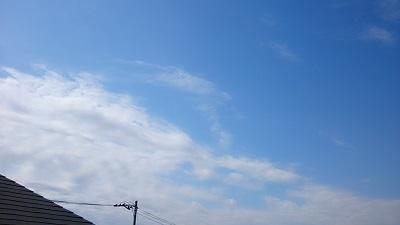 20140411pic.jpg