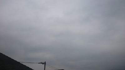 20140418pic.jpg