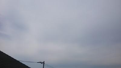 20140428pic.jpg