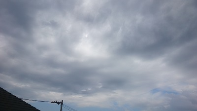 20140516pic.jpg