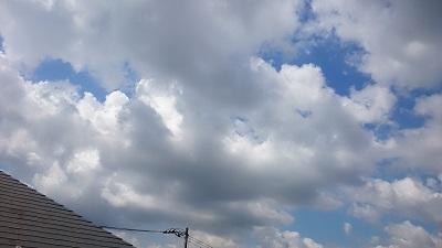 20140522pic.jpg
