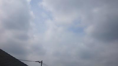 20140528pic.jpg