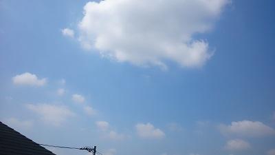 20140529pica.jpg