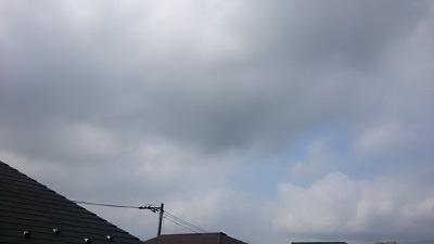 20140609pic.jpg