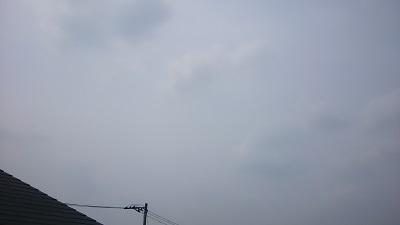 20140617pic.jpg