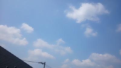 20140619pic.jpg