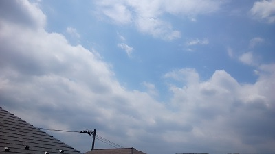 20140623pic.jpg