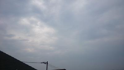 20140714pic.jpg