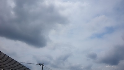 20140720pic.jpg