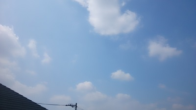 20140731pic.jpg