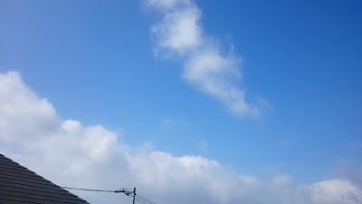20140811pic.jpg