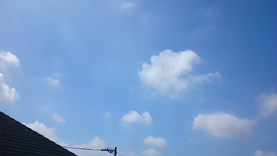 20140818pic.jpg