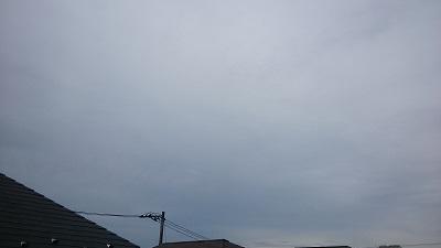 20140824pic.jpg