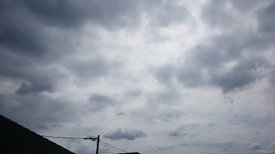 20140830pic.jpg