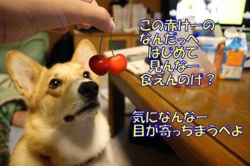 030_new