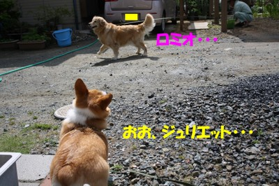 013_new_5