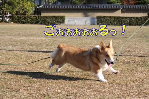 099_new