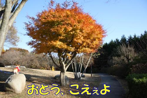 105_new