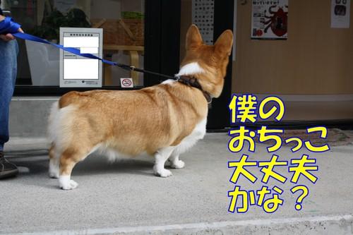 050_new_2