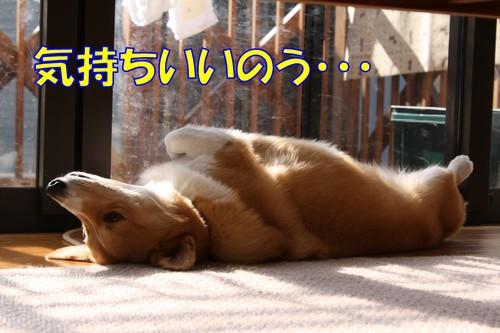 045_new_5