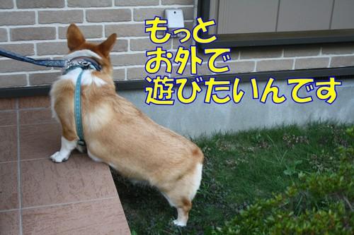 054_new_2