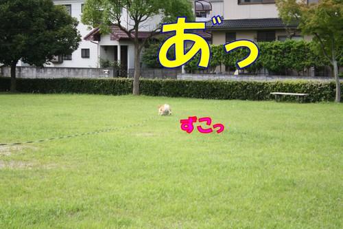 019_new_2
