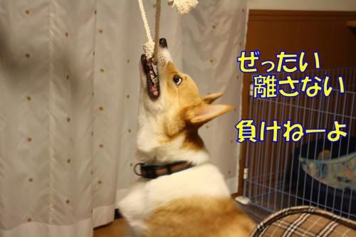 018_new_2